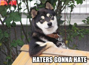 haters-gonna-hate-cool-dog
